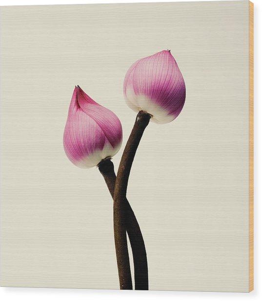 Pink Flower Wood Print by Son Gallery - Wilson Lee