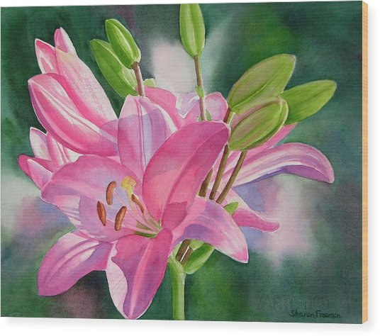 Pink Lily With Buds Wood Print