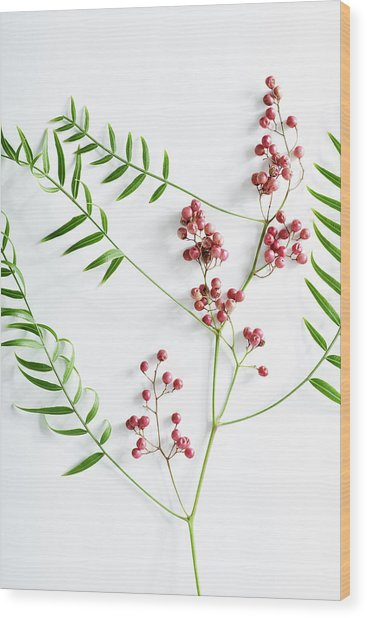 Pink Peppercorn Branch On White Wood Print by Amy Neunsinger