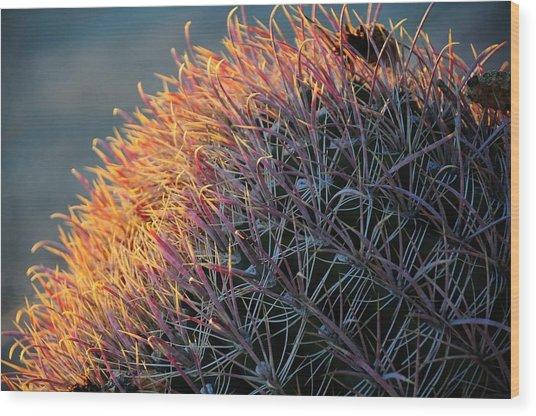 Pink Prickly Cactus Wood Print