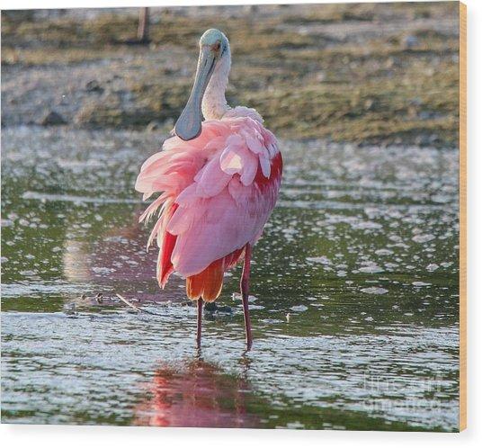 Pink Tutu Wood Print