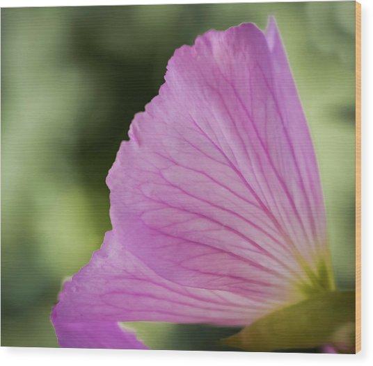 Pink Vains Wood Print