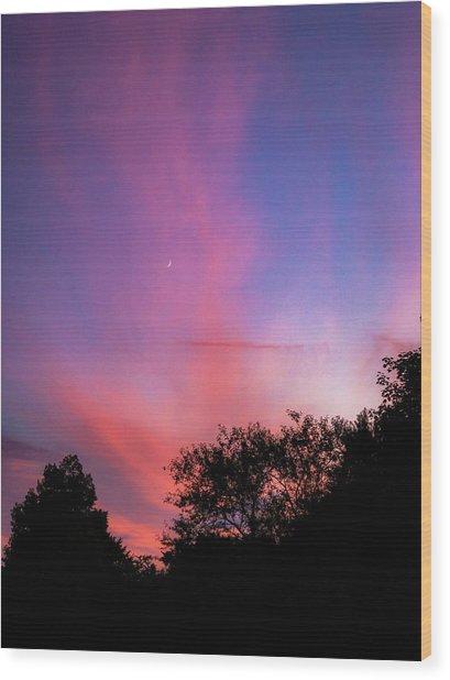 Pink Whisps Wood Print