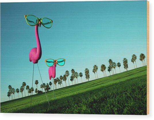 Plastic Pink Flamingos On A Green Lawn Wood Print