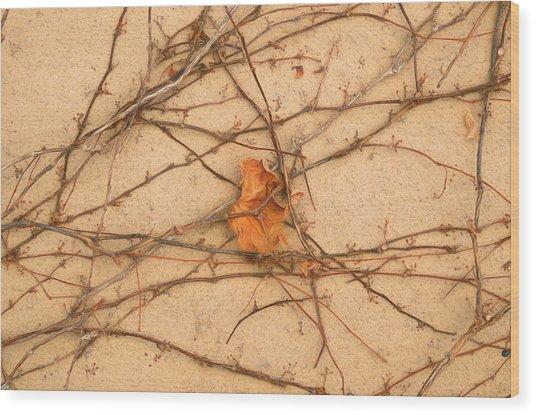 Wood Print featuring the mixed media Poignant 4 by Lynda Lehmann