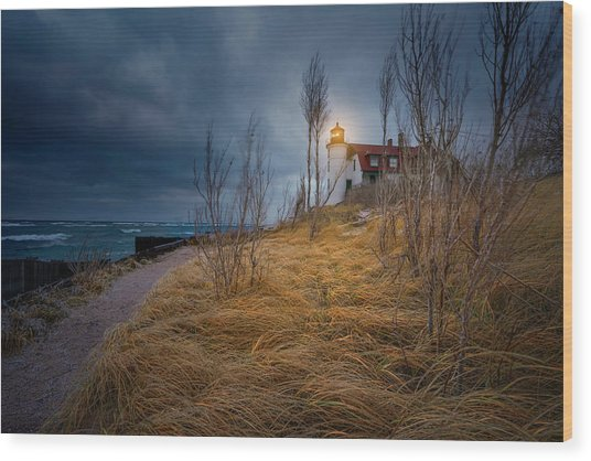 Point Betsie Lighthouse In Frost Wood Print
