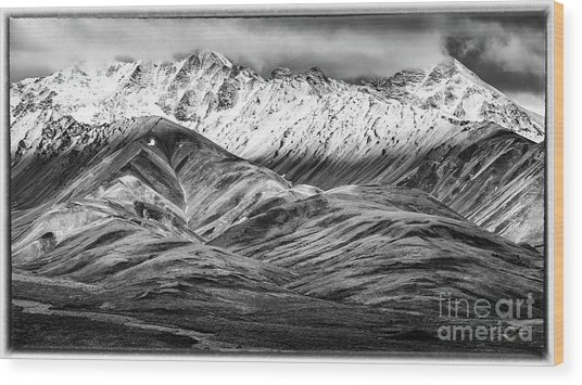 Polychrome Mountain, Denali National Park, Alaska, Bw Wood Print