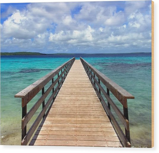 Pontoon New Caledonia Wood Print by Vincent Jary
