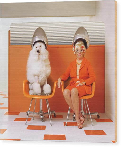 Poodle And Senior Woman Sitting Under Wood Print by Kendall Mcminimy