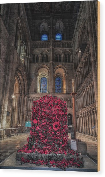 Poppy Display At Ely Cathedral Wood Print