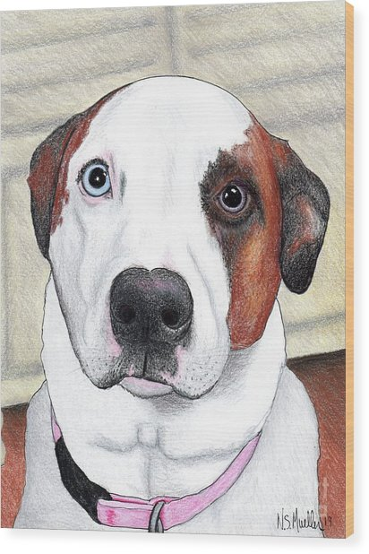 Portrait Of A Dog Named Dave Wood Print