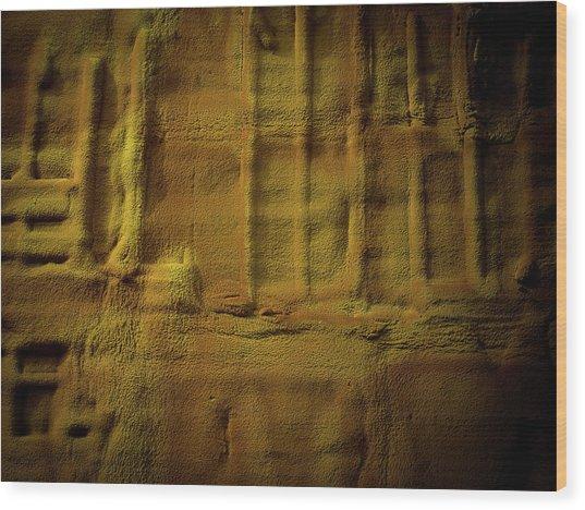Prehistoric Scene Wood Print