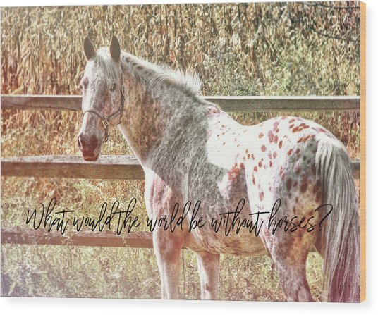 Pretty Appaloosa Quote Wood Print by JAMART Photography