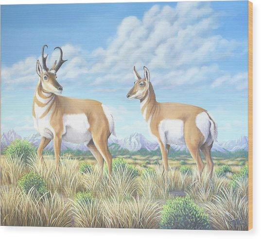 Pronghorn By The Tetons Wood Print
