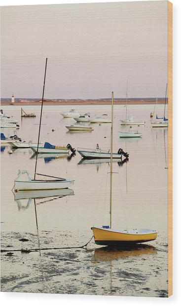 Provincetown Harbor Wood Print by Walter Bibikow