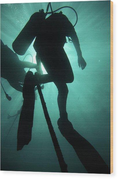 Pulau Redang Wood Print by Underwater Graphics