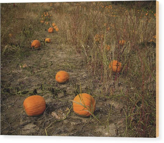 Wood Print featuring the photograph Pumpkins Lying In A Field by Whitney Leigh Carlson
