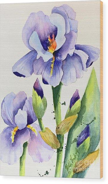Purple Iris And Buds Wood Print