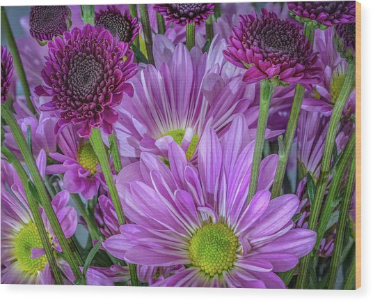 Purple Power Wood Print