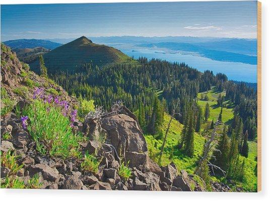 Purple Vista Wood Print