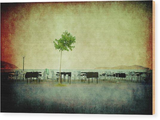 Wood Print featuring the photograph Quiet Evening by Milena Ilieva