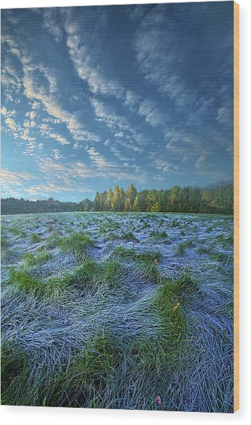 Wood Print featuring the photograph Quiet Grace by Phil Koch