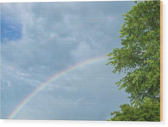 Rainbow And A Tree Wood Print