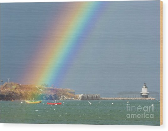 Rainbow At Spring Point Ledge Wood Print