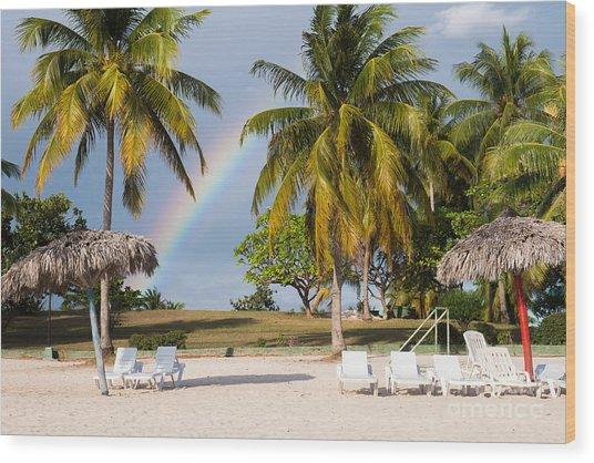 Rainbow Between Palm Trees On Playa Wood Print