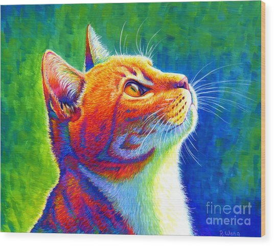 Rainbow Cat Portrait Wood Print