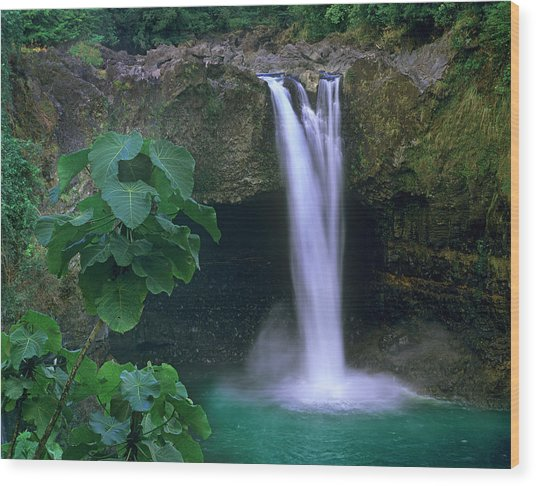 Rainbow Falls Cascading Into Pool, Big Wood Print by Tim Fitzharris/ Minden Pictures
