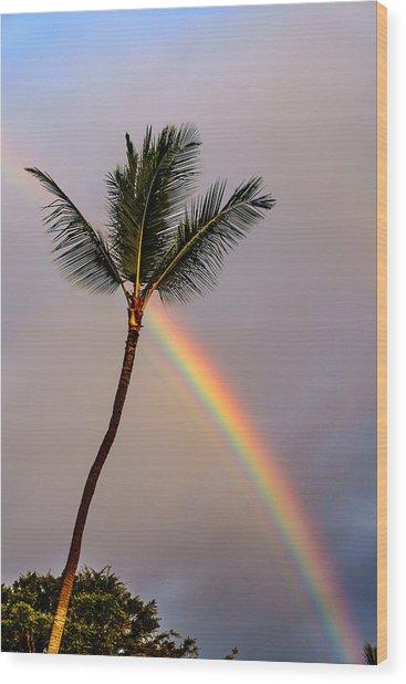 Rainbow Just Before Sunset Wood Print