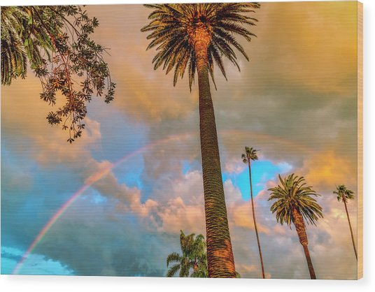 Rainbow Over The Palms Wood Print