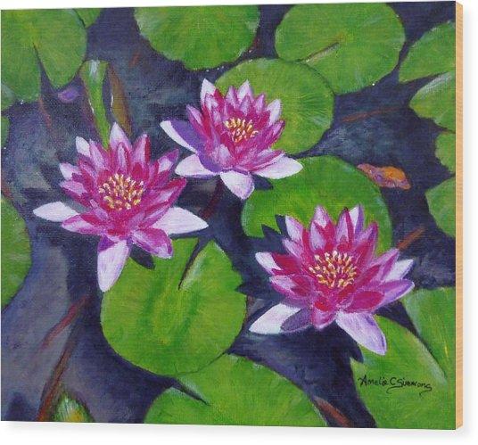 Rancho Water Lilies Wood Print