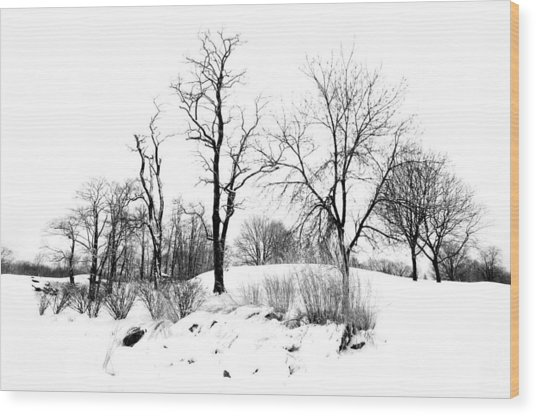 Reaching High Wood Print by Diana Lee Angstadt