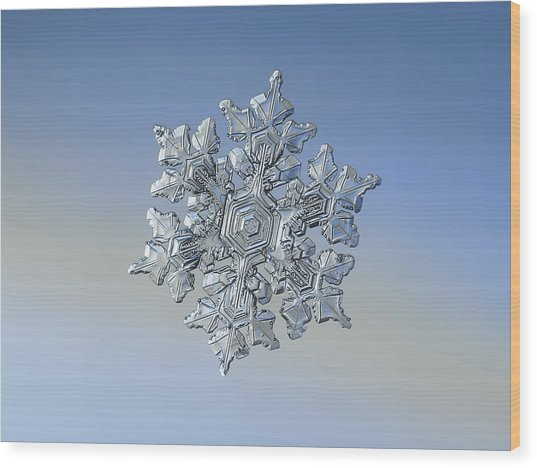 Wood Print featuring the photograph Real Snowflake - 05-feb-2018 - 17 by Alexey Kljatov
