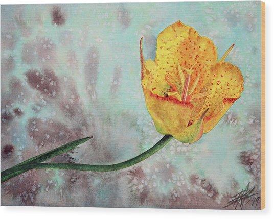 Reclining Mariposa Lily Wood Print by Robin Street-Morris