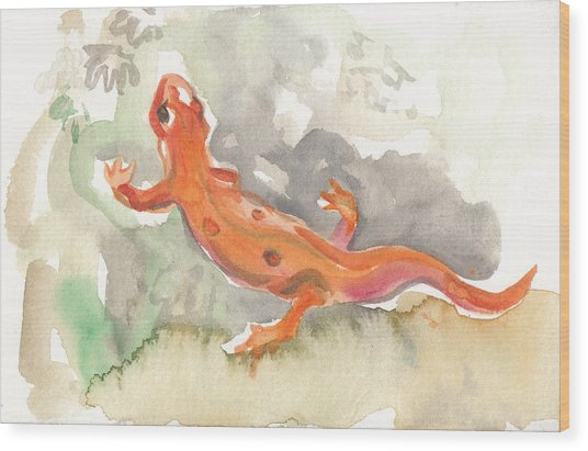Red Eft Wood Print