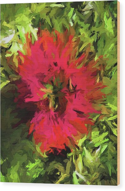 Red Flower Flames Wood Print