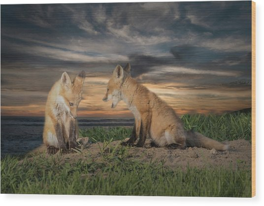Red Fox Kits - Past Curfew Wood Print