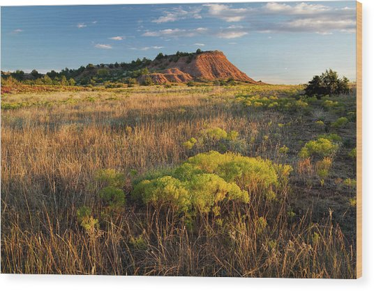Wood Print featuring the photograph Red Hills Evening by Scott Bean