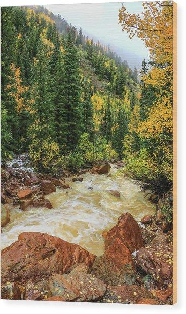 Red Mountain Creek In San Juan Mountains Wood Print