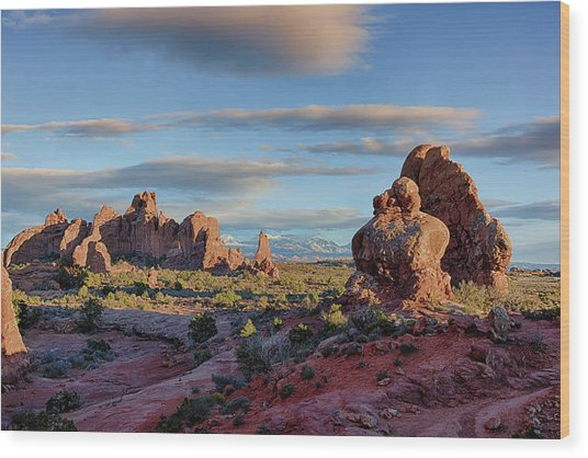 Red Rock Formations Arches National Park  Wood Print