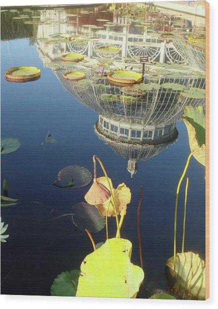 Reflection Of Botanical Garden Wood Print by Margaret Mendel