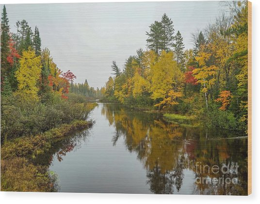 Reflections In Autumn Wood Print
