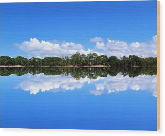 Reflective Lake Patricia Wood Print