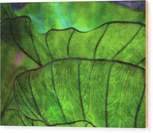 Repetition 5155 Idp_2 Wood Print