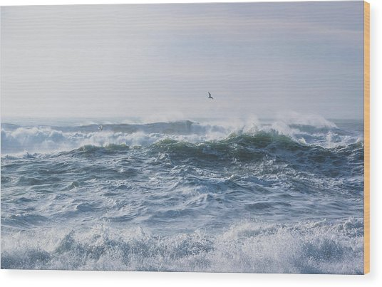 Reynisfjara Seagull Over Crashing Waves Wood Print