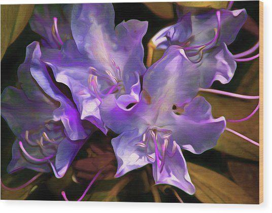 Wood Print featuring the mixed media Rhododendron Glory 17 by Lynda Lehmann