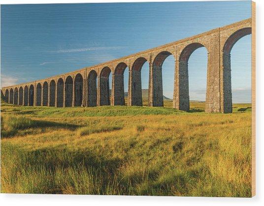 Ribblehead Viaduct Wood Print by David Ross